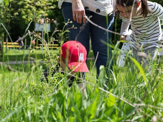 Verstecker_Entdeckerfarben_2021@Jagdschloss Kranichstein